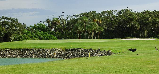 30++ Buffalo creek golf course bradenton florida ideas