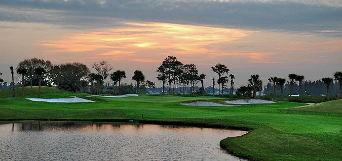 Saddlebrook resort palmer course florida golf course for Saddelbrook